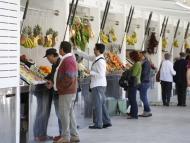 foto de los puestos del Mercado Central de Cádiz